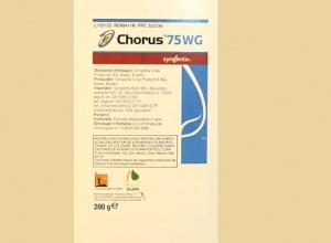 Chorus 75 WG