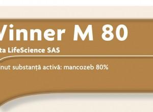 Winner M 80