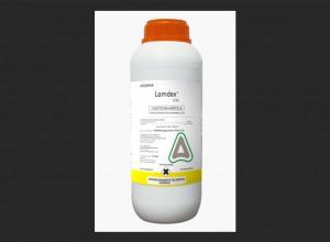 Lamdex 5 EC