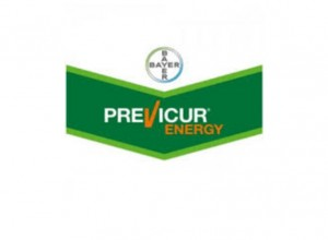 Previcur Energy - Bayer