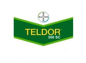 Teldor 500 SC - Bayer