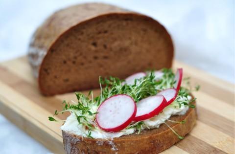 Tartină cu brânză, ridichi și plante tinere de creson