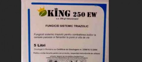 King 250 EW