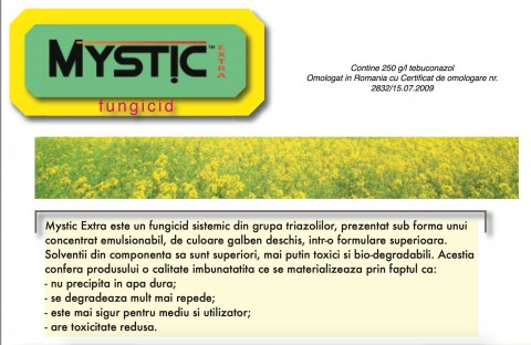 Mystic Extra