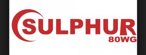 Sulphur 80 WG
