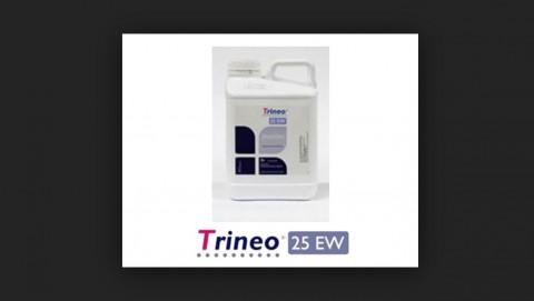 Trineo 25 EW
