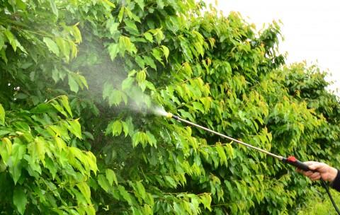 Cum se verifică compatibilitatea produselor fitosanitare în amestecuri
