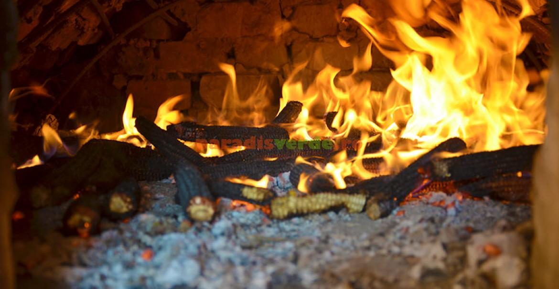 Pentru coacerea aluaturilor, cuptorul trebuie încălzit cu lemne de fag, carpen sau cu ciocălăi de porumb.