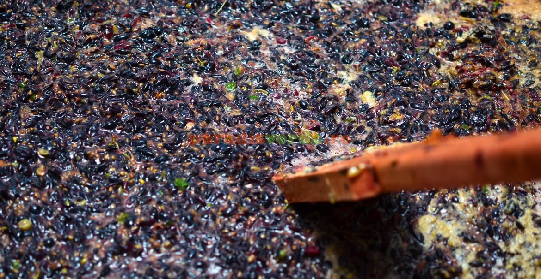 Mustuială de Cabernet sauvignon și Băbească neagră, fără ciorchini