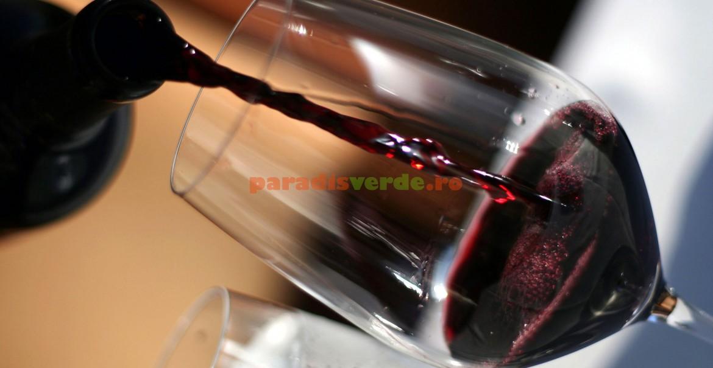 Vinul roșu, resveratrol, dar nu mai mult de un pahar pe zi