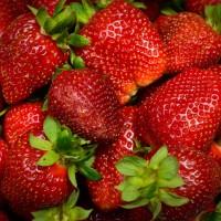 Căpșun MIX